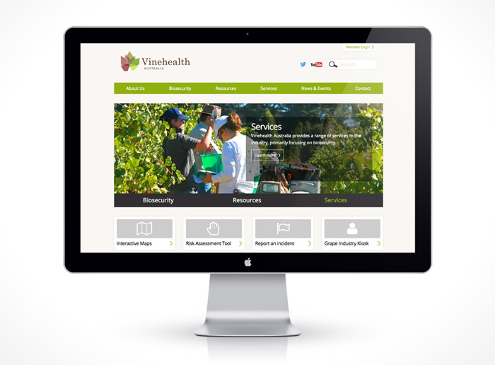 Web Design - Vinehealth Australia
